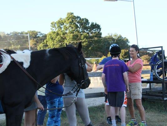 636447022093815409-horse2.JPG