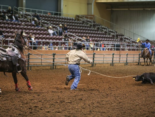 Roper compete in preliminary roping events for the