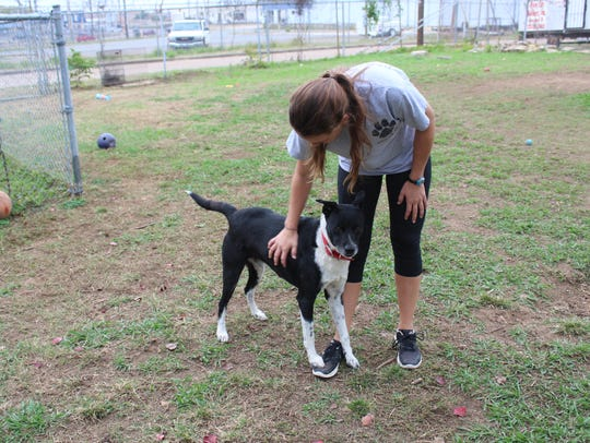 Courtney Wingate, the Humane Society director, pets