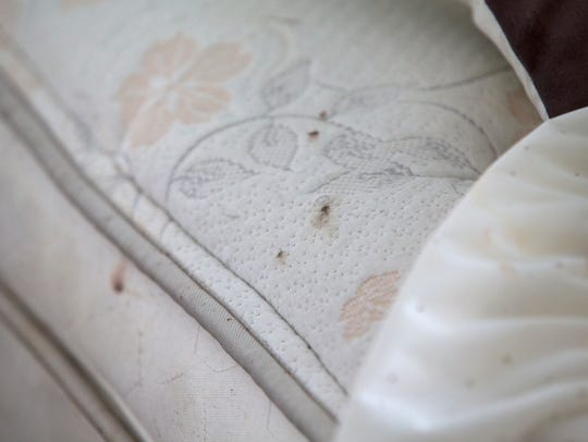 """Dried blood is seen on Richard Atkinson's bedsheets. """"I see three or four of them every morning, and I immediately kill them,"""" Atkinson says of bedbugs."""