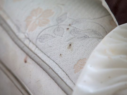 "Dried blood is seen on Richard Atkinson's bedsheets. ""I see three or four of them every morning, and I immediately kill them,"" Atkinson says of bedbugs."