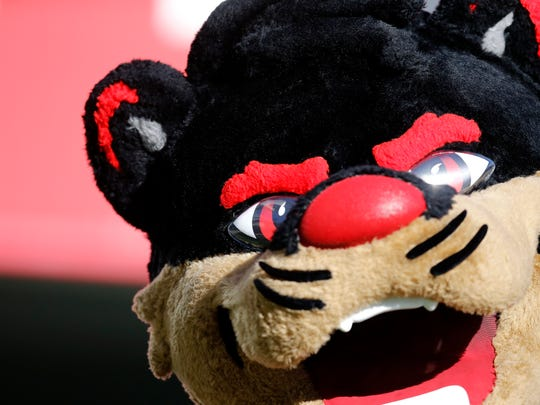 The Bearcat roams the sidelines in the fourth quarter of the NCAA football game between the Cincinnati Bearcats and the Connecticut Huskies at Nippert Stadium in Cincinnati on Saturday, Nov. 25, 2017. The Bearcats took a 22-21 win on senior day after the Huskies missed an extra point attempt with no time left on the clock.