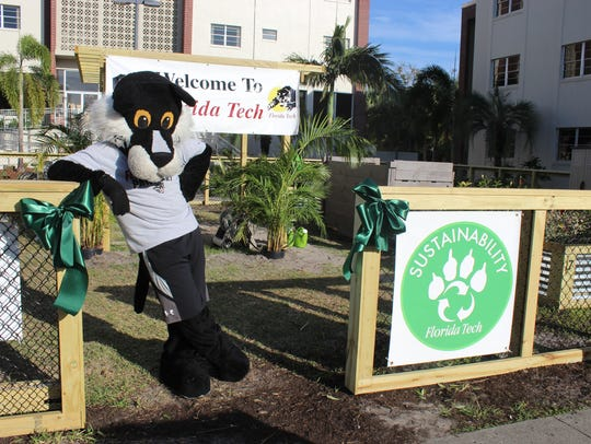 The Florida Tech mascot stands in the community garden.