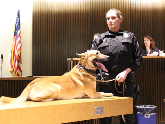 Mansfield Police K9 Sam and Sergeant Sara Mosier-Napier came to Mansfield City Council on Tuesday, Jan. 16, 2018. Council recognized five-year-old Sam, who retired from the police department.