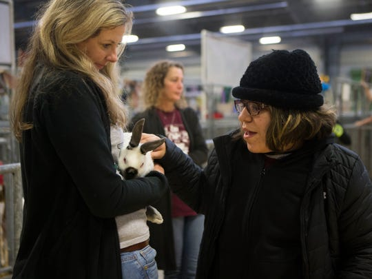Flour Bluff Junior High student Jhayden Wright, 14, pets a rabbit during the Tour For Kids With Special Needs event Friday, Jan. 19, 2018 at the Richard M. Borchard Fairgrounds in Robstown. The event was organized to allow special needs students to be apart of the Nueces County Junior Livestock Show.