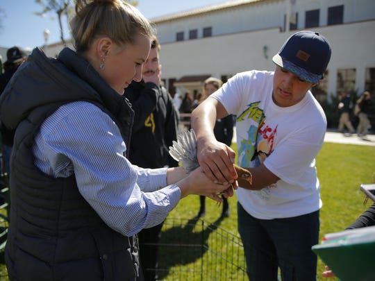 Salinas High agriculture students celebrated National FFA Week with a petting zoo.