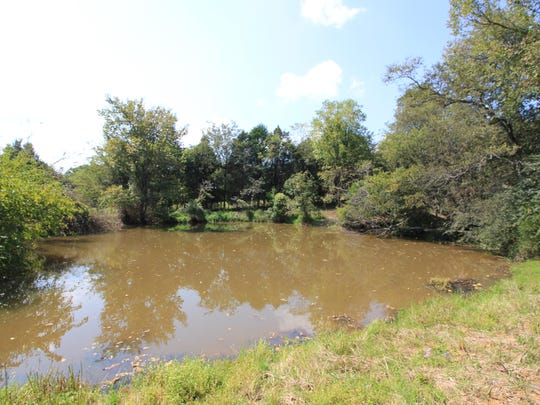 The pond on Kindle and Josh Hughes' land will be stocked for fishing.