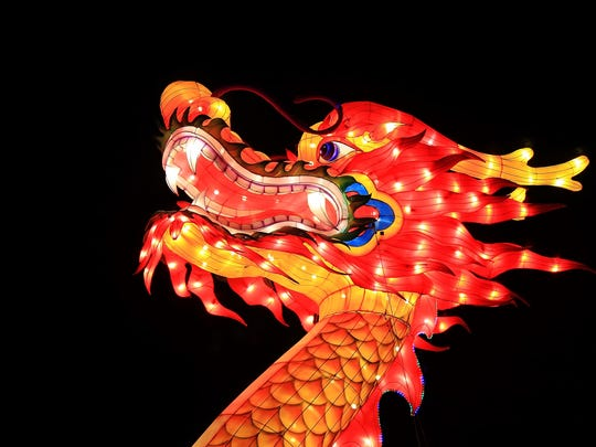 The beautiful dragon head from the Dragon Lights Festival.