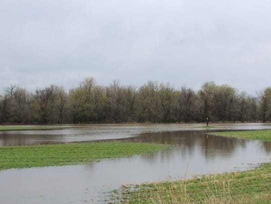 An alfalfa field south of Fond du Lac is underwater