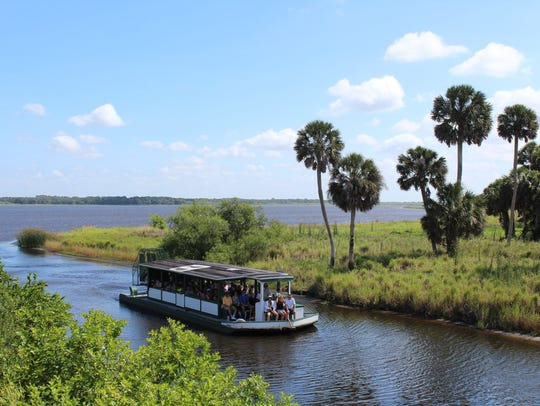 One-hour narrated nature tours of Upper Myakka Lake