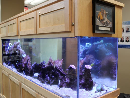 fish tank in the Radiation Oncology