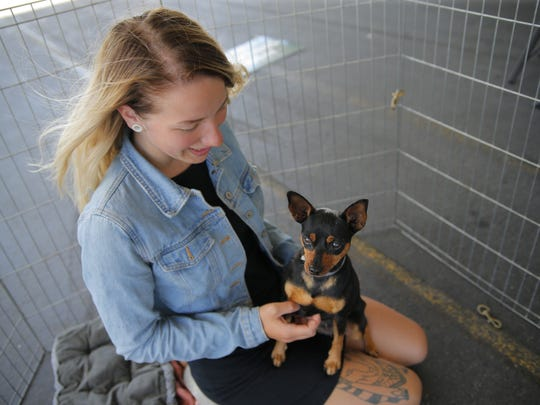 The SPCA for Monterey County held the Dogs and Hogs