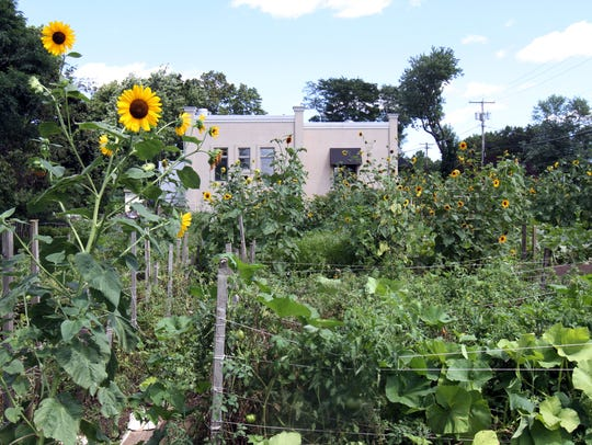 Chris Mumford planted and maintained a half-acre garden
