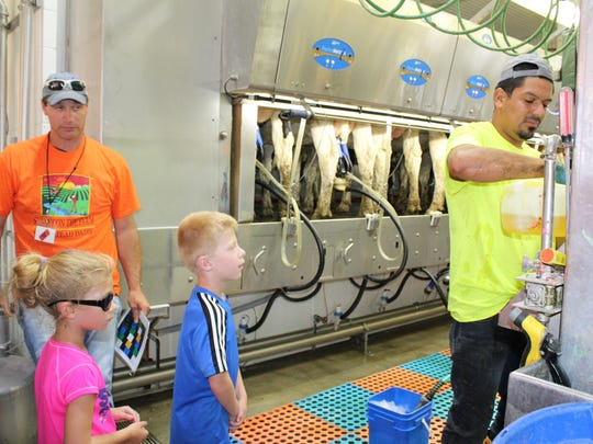 Young guests watch closely as Brickstead Farm employees