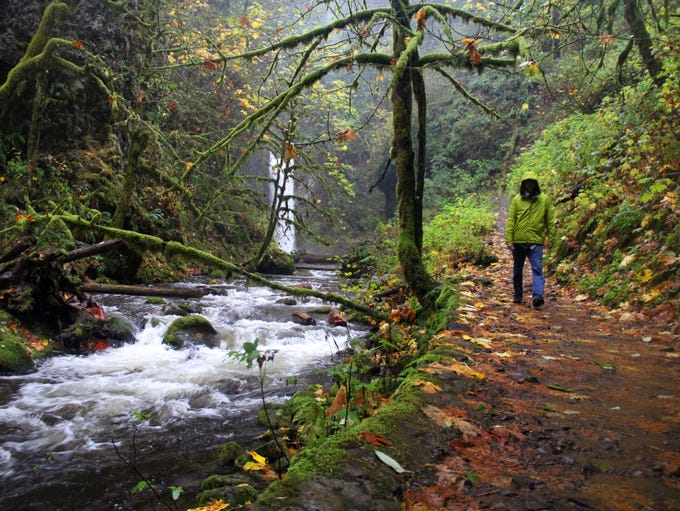 Above Multnomah Falls in the Columbia River Gorge,