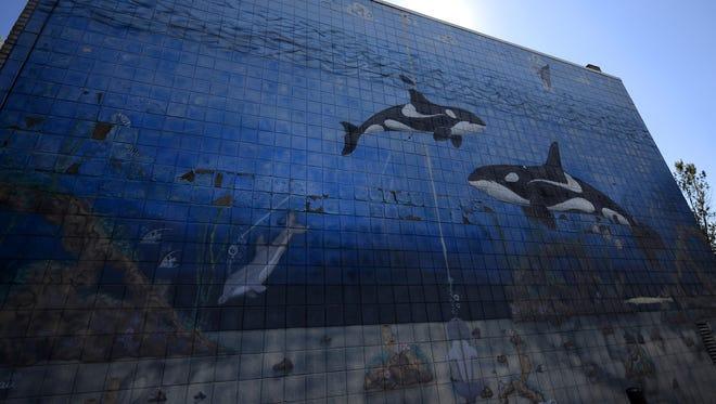 A whale mural decorates the side of John Otis' American Family Insurance agency off Cormier Road in Ashwaubenon.