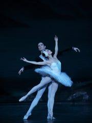 swan-lake-4978-----alexander-daev-2014