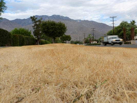 635738581893708678-drought-dry-grass2