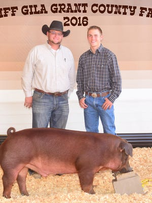 Chance Porter placed fourth in the duroc swine at the Cliff Gila Grant County Fair. James Hamilton Construction was the buyer.