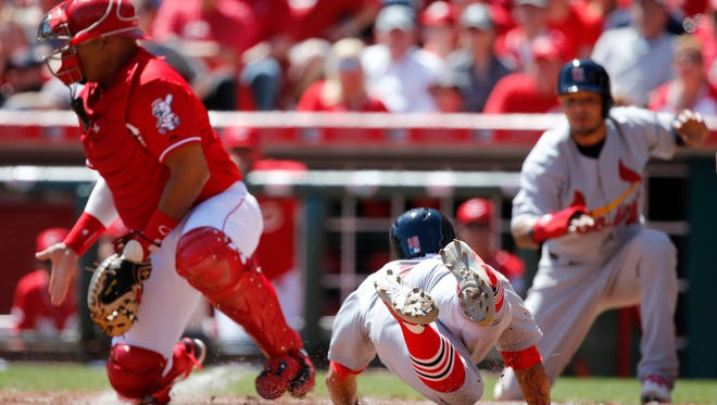 St. Louis Cardinals second baseman Kolten Wong (16) scores in the fifth inning during the game against the St. Louis Cardinals, Sunday.
