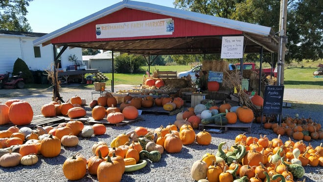 Summer is sticking around at Reimann's Farm Market, but you'll find your favorite pumpkins and fall decorations as well.