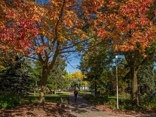 autumncolor14.jpg