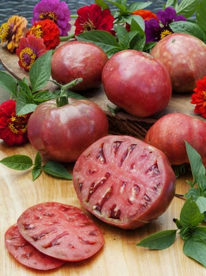 The heirloom Cherokee Purple's 'symphony of flavors' is the Hoosier Gardener's favorite tomato.