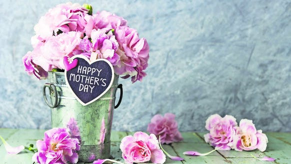 Pink carnation flowers in zinc bucket with happy mothers
