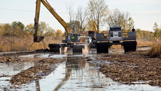 An excavator fills a marsh buggy with sediment in Krispin Drain Wednesday, October 14, 2015 on Harsens Island. The $3.5 million project, part of the EPA Great Lakes Restoration Initiative, will widen an dredge Krispin Drain, restore native vegetation and make the waterway navigable to canoes and kayaks.