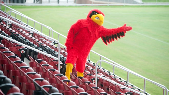 During opening ceremonies for the Dr. Mark and Cindy Lynn (UofL) Cardinals Soccer Stadium, speakers and fans were rained down upon by torrential downpour, and ran for cover under the awning of the new facility. When the rain seemed to subside, the UofL Cardinal tested the sky. 25 August 2014