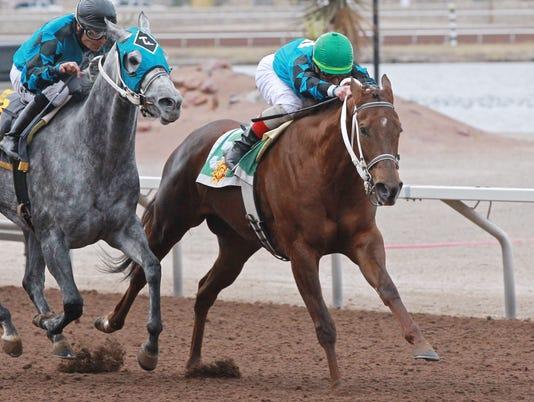 636491404822842401-TILLA-CAT---New-Mexico-Racing-Commission-Handicap---19th-Running---12-17-17---R08---SUN---Finish-2.jpg