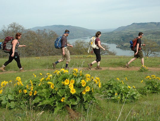 AP_OUTDOORS_HIKING_COLUMBIA_GORGE_WILDFLOWERS_63922482