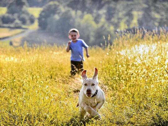 This photo of her son chasing the family dog earned Cary Crooker of Addison first place in a creative photography contest.