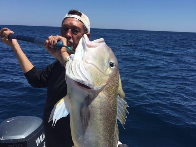 Peter Mitten caught this 22-pound golden tilefish recently.