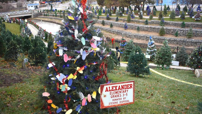 Comstock Christmas Riverwalk trees were a part of last year's Guinness world record attempt that saw 676 illuminated Christmas trees in the park. Though there won't be a record attempt, trees are back on sale for this year's rendition.