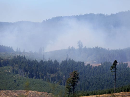The Willamina Creek Fire has grown to more than 200 acres on Thursday, Aug. 20, 2015, near Willamina, Ore. Firefighters from Sheridan, Amity, West Valley, Dundee, Dayton and McMinnville agencies are helping to control the blaze along with the Oregon Department of Forestry.