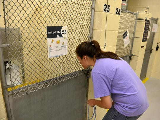 Tiffany Staigmiller of the Great Falls Animal Shelter