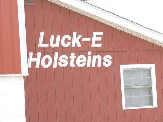 Dennis and Beth Engel own Luck-E Holsteins, opened