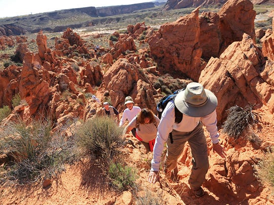 Community members participate in a charity hike in the Red Cliffs Desert Reserve Feb. 24, 2016.