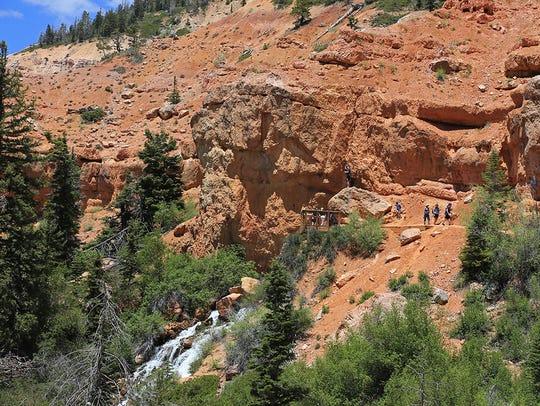 Cascade Falls Trail on Cedar Mountain in the Dixie