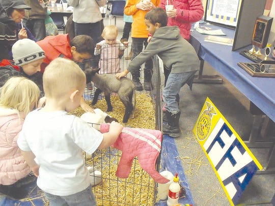 The BACC FFA shares some of their new lambs and kid goats in their popular attraction at the annual event.