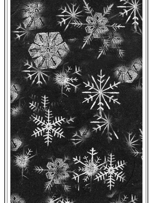 TOS_snowflakes.jpg