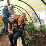 Greenhouse gardening on the rise in Palomas, Mexico