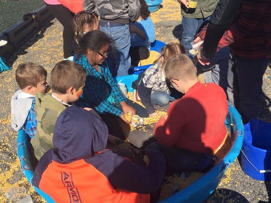 Students enjoyed playing in the corn pit during the round-up event.