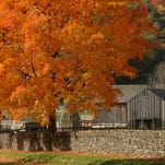 How to fall in love with upstate NY autumn