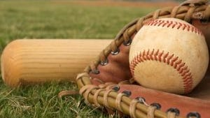 The Fowlerville baseball and softball teams won district championships on Wednesday.