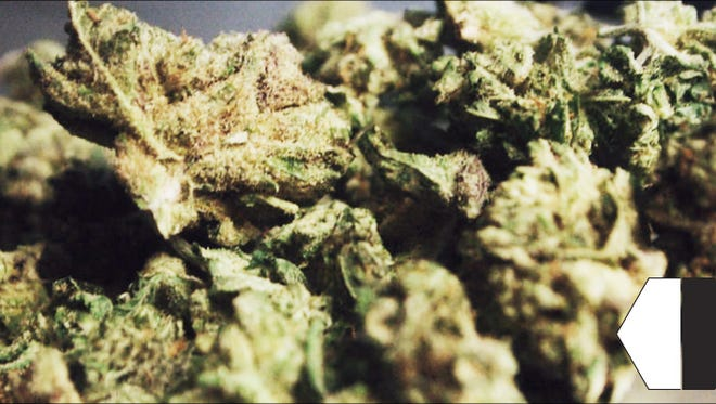 Las Vegas-based GG Strains' Gorilla Glue #4 hybrid marijuana strain.