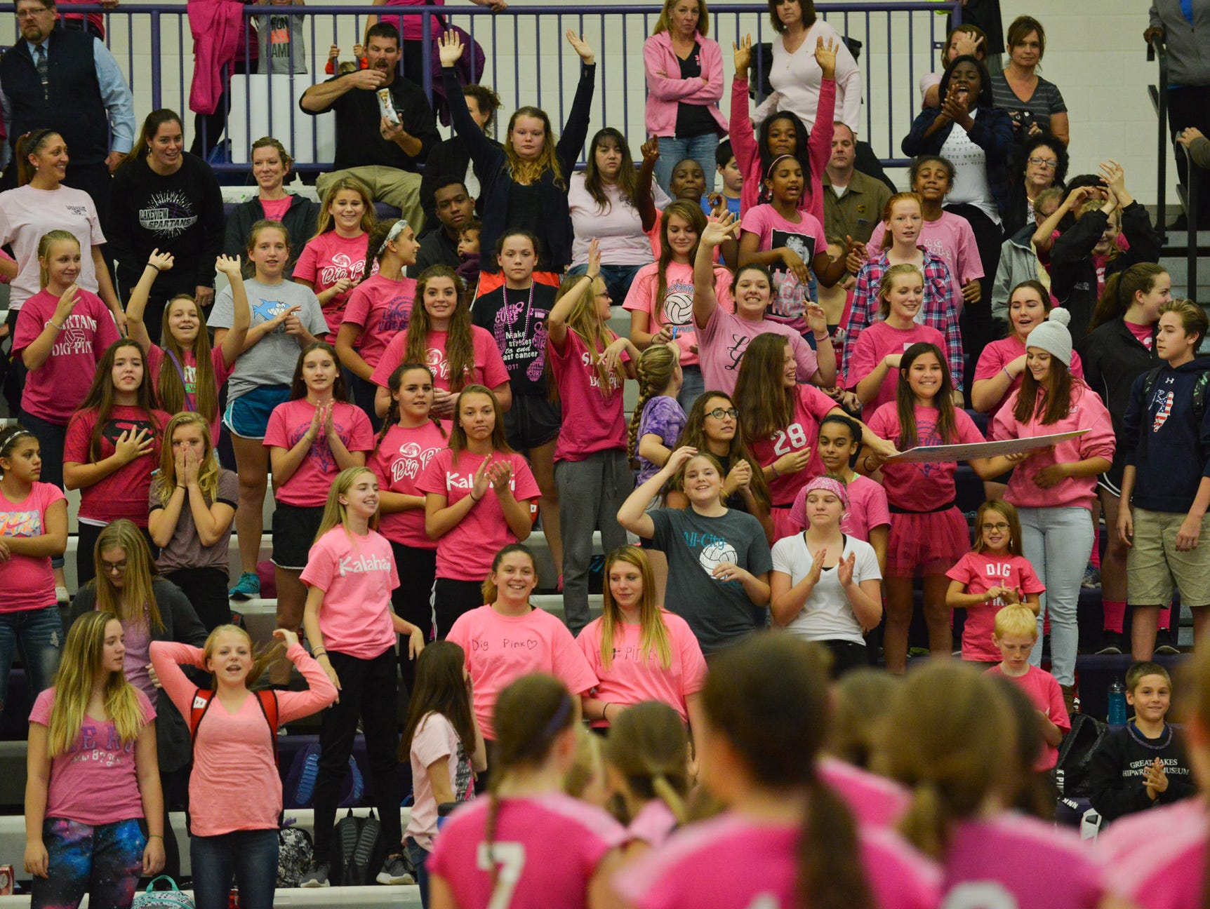 Lakeview students cheer on their volleyball team as the players are announced during pregame.