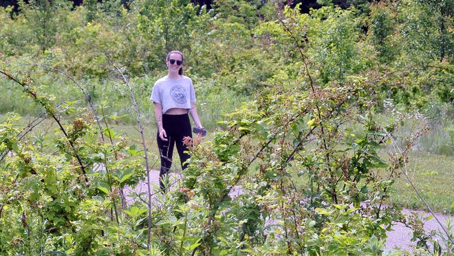 Erin O'Donnell takes a walk several times a week at Oak Hill Park. Naturalists and Entomologists recommend wearing long pants on trails to reduce the amount of exposed skin ticks can attach themselves to.