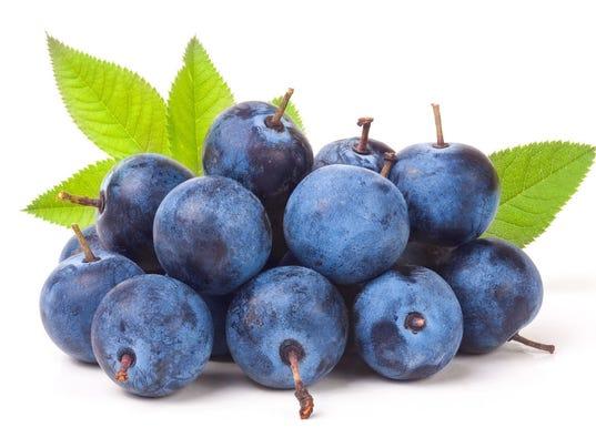 TDS-NBR-0616-Fresh-Pick-Blueberries.jpg